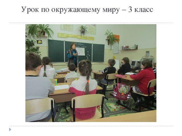 Урок по окружающему миру – 3 класс