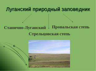 Луганский природный заповедник Стрельцовская степь Станично-Луганский Проваль
