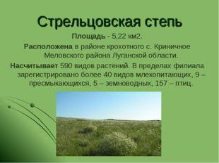 Стрельцовская степь Площадь - 5,22 км2. Расположена в районе крохотного с. Кр