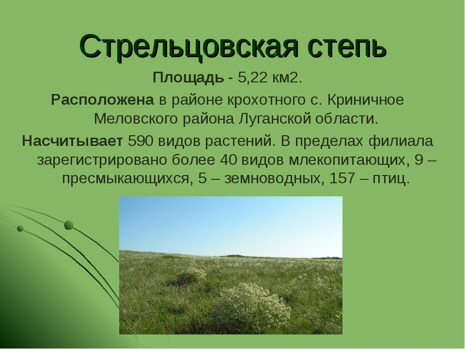 Стрельцовская степь Площадь - 5,22 км2. Расположена в районе крохотного с. Кр...