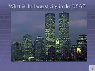 What is the largest city in the USA?