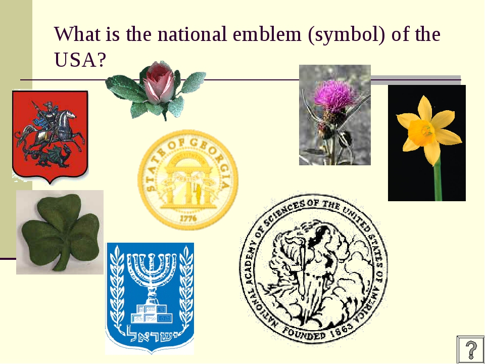 What is the national emblem (symbol) of the USA?