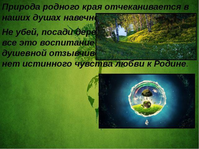 Природа родного края отчеканивается в наших душах навечно. Не убей, посади д...