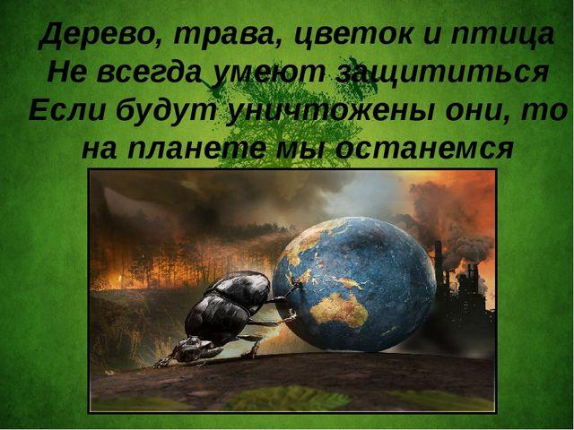 Дерево, трава, цветок и птица Не всегда умеют защититься Если будут уничтоже...