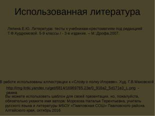 Использованная литература Ляпина Е.Ю. Литература: тесты к учебникам-хрестомат