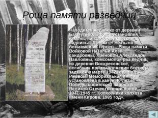 Роща памяти разведчиц Находится недалеко от деревни Бахмутово. В роще установ