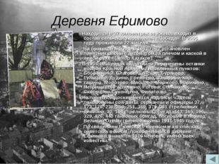 Деревня Ефимово Находится в 37 километрах от Ржева, входит в состав сельског