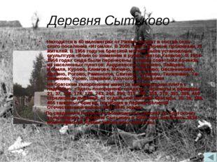 Деревня Сытьково Находится в 40 километрах от Ржева, входит в состав сельско
