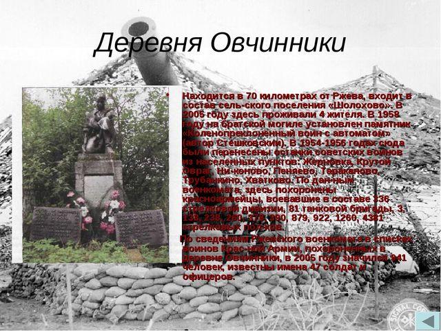 Деревня Овчинники Находится в 70 километрах от Ржева, входит в состав сельск...