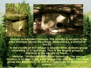 Dolmen in the tract Rownota. The dolmen is located in the tract Rownota (abo