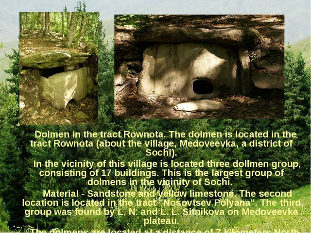Dolmen in the tract Rownota. The dolmen is located in the tract Rownota (abo...