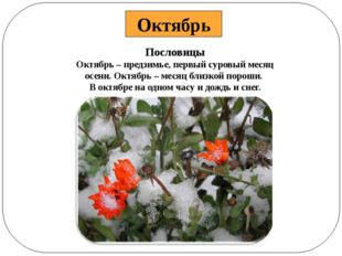 Пословицы Октябрь – предзимье, первый суровый месяц осени. Октябрь – месяц бл