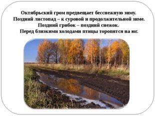 Октябрьский гром предвещает бесснежную зиму. Поздний листопад – к суровой и