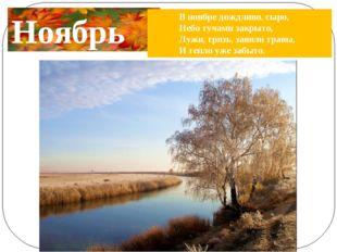 Ноябрь В ноябре дождливо, сыро, Небо тучами закрыто, Лужи, грязь, завяли трав