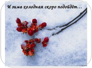 И зима холодная скоро подойдёт…