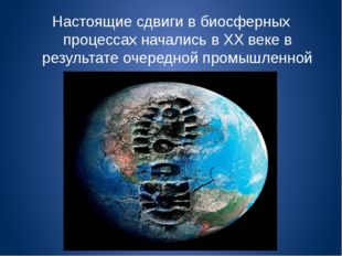 Настоящие сдвиги в биосферных процессах начались в XX веке в результате очере