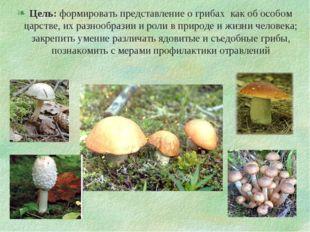 Цель: формировать представление о грибах как об особом царстве, их разнообраз