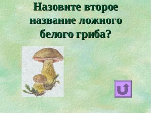 Назовите второе название ложного белого гриба?