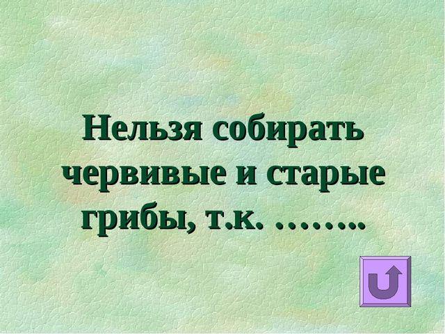 Нельзя собирать червивые и старые грибы, т.к. ……..