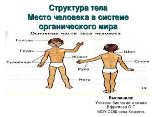 Структура тела Место человека в системе органического мира Выполнила: Учитель