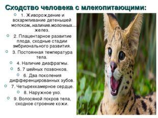 Сходство человека с млекопитающими: 1. Живорождение и вскармливание детенышей
