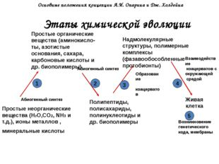 Этапы химической эволюции Простые неорганические вещества (Н2О,CO2, NH3 и т.д