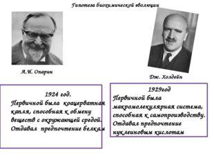 1929год Первичной была макромолекулярная система, способная к самопроизводств