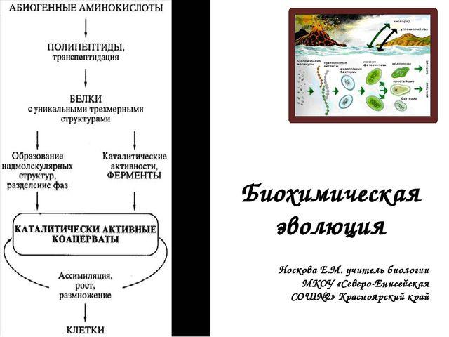 Биохимическая эволюция Носкова Е.М. учитель биологии МКОУ «Северо-Енисейская...