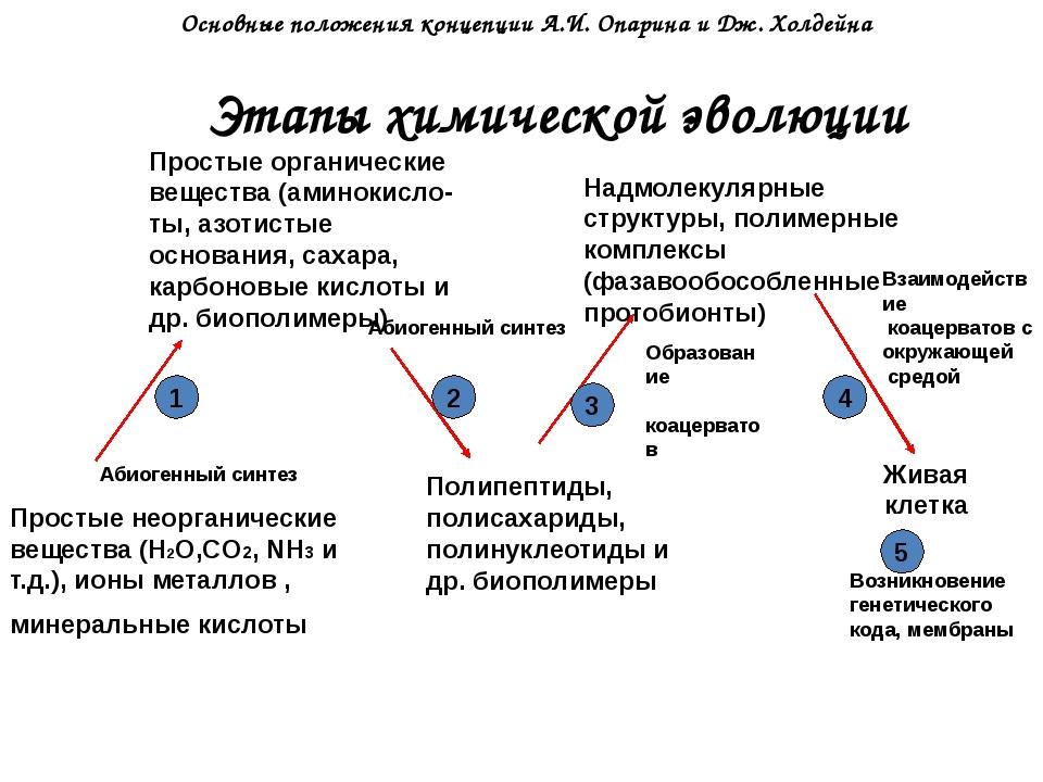 Этапы химической эволюции Простые неорганические вещества (Н2О,CO2, NH3 и т.д...
