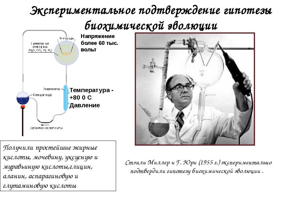 Экспериментальное подтверждение гипотезы биохимической эволюции Стэнли Миллер...