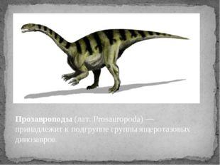 Прозавроподы (лат. Prosauropoda) — принадлежит к подгруппе группы ящеротазовы