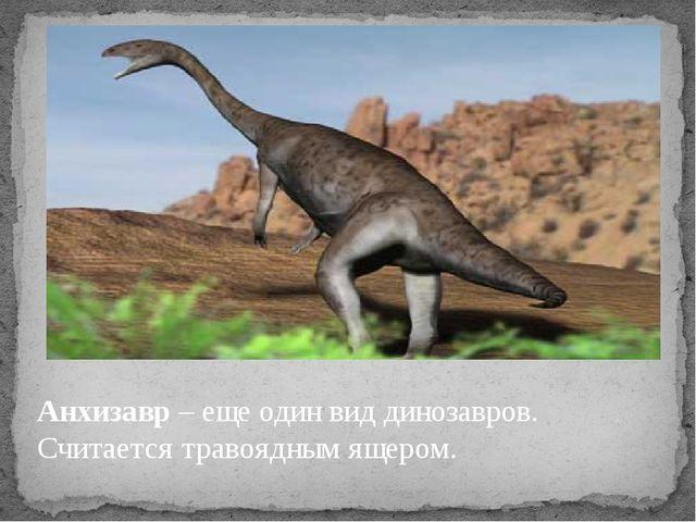 Анхизавр – еще один вид динозавров. Считается травоядным ящером.