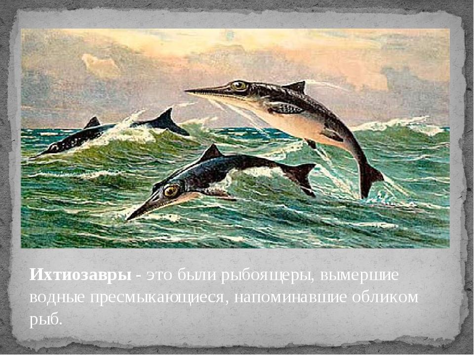 Ихтиозавры - это были рыбоящеры, вымершие водные пресмыкающиеся, напоминавшие...