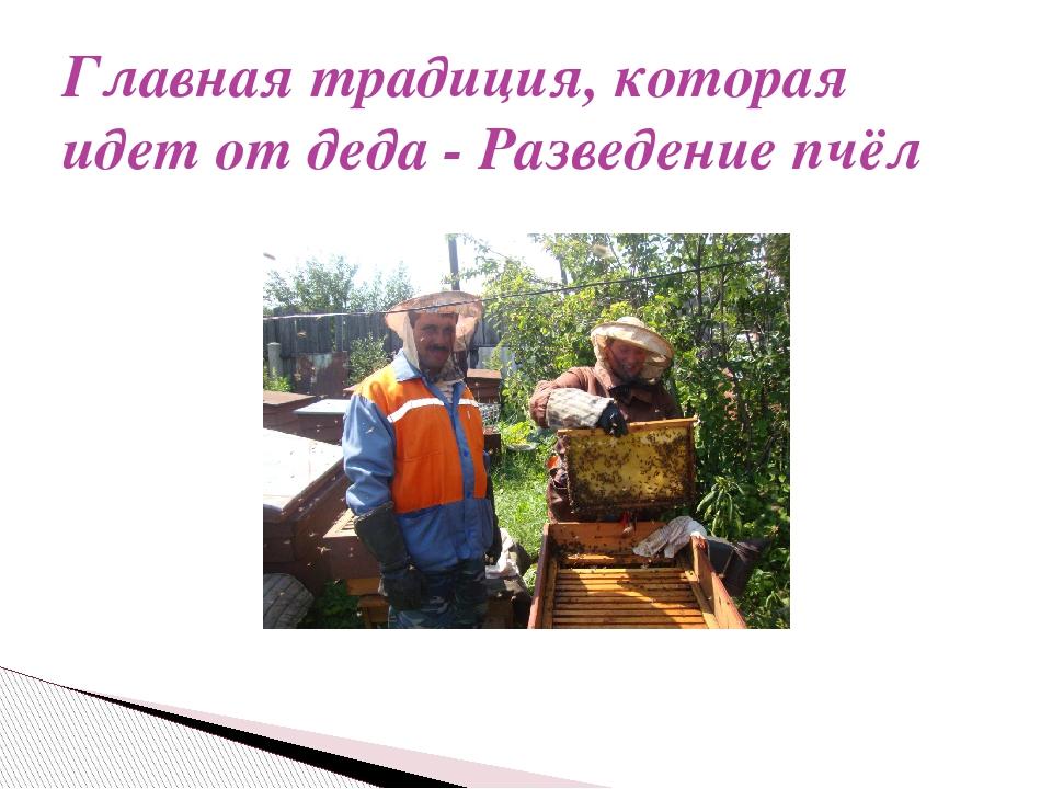 Главная традиция, которая идет от деда - Разведение пчёл