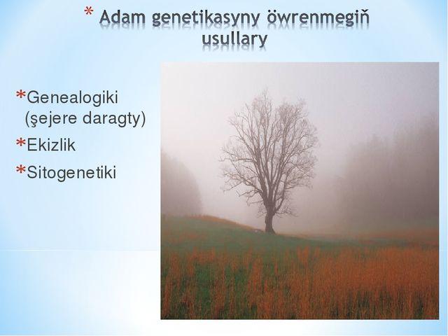 Genealogiki (şejere daragty) Ekizlik Sitogenetiki