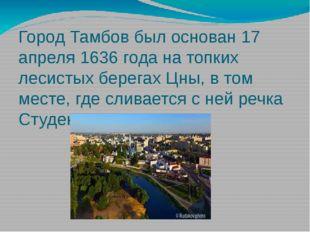 Город Тамбов был основан 17 апреля 1636 года на топких лесистых берегах Цны,