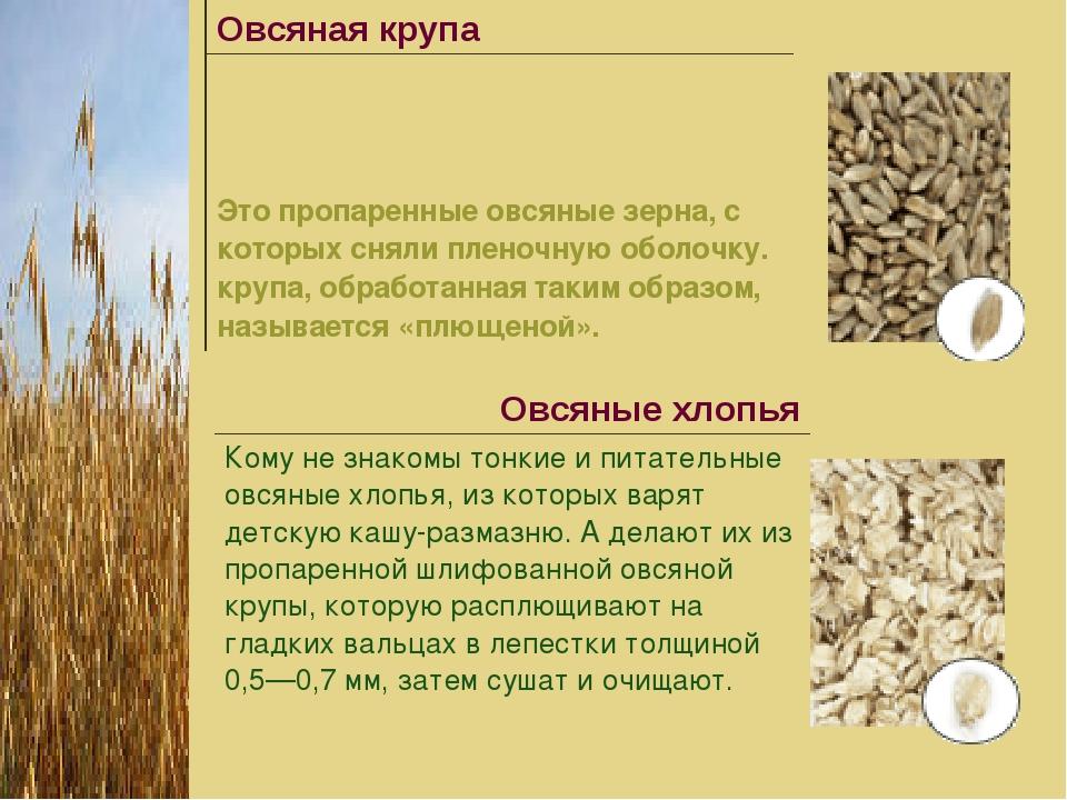 Овсяная крупа Это пропаренные овсяные зерна, с которых сняли пленочную обол...