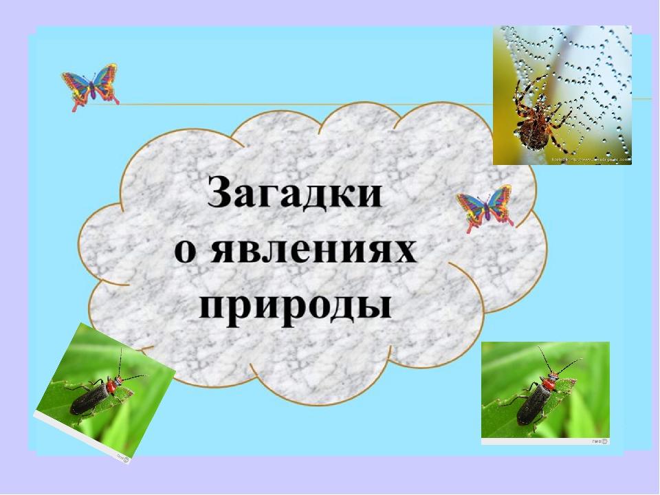 Загадки о природных явлениях в картинках