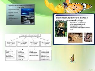 Работа с тестами помогают осуществлять познавательную учебную деятельность 1)