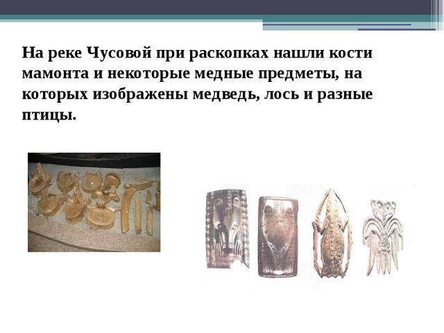 На реке Чусовой при раскопках нашли кости мамонта и некоторые медные предметы...