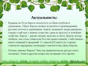 Олег Шестинский Издавна на Руси береза пользуется особым почётом и уважением.