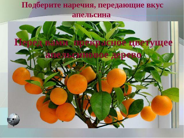 Подберите наречия, передающие вкус апельсина Перед вами прекрасное цветущее а...