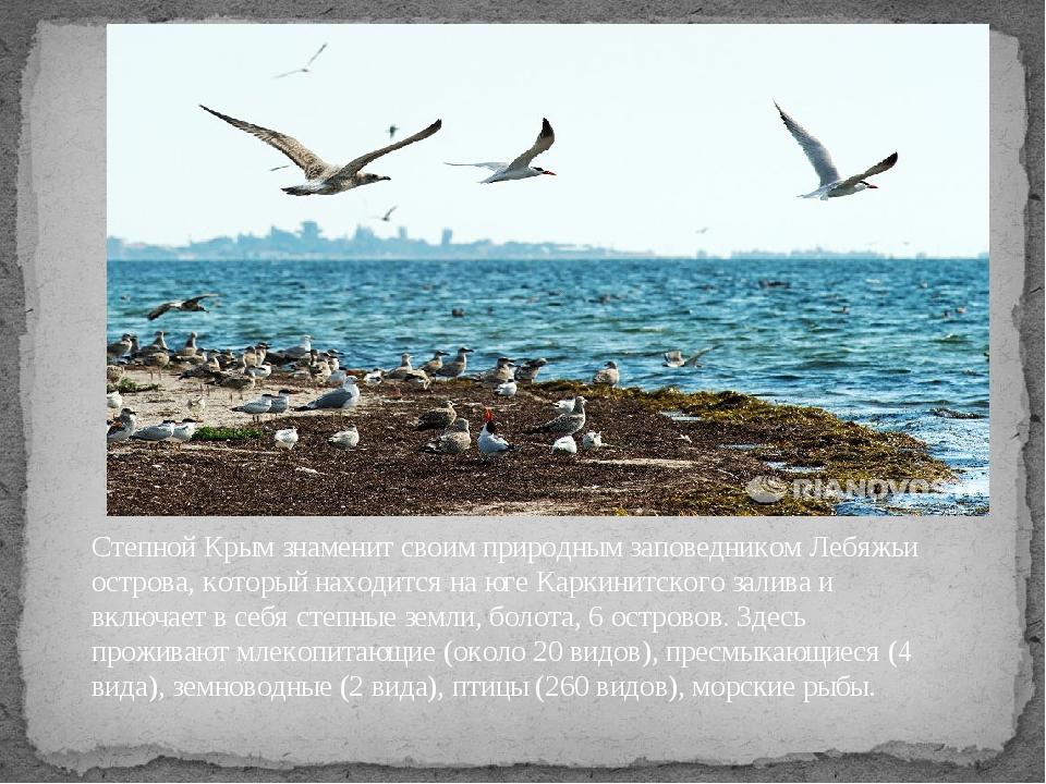 Степной Крым знаменит своим природным заповедником Лебяжьи острова, который н...