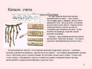 * Начало счета Приспособления На заре цивилизации наш предок – первобытный че