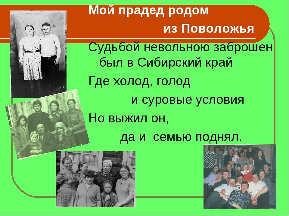Мой прадед родом из Поволожья Судьбой невольною заброшен был в Сибирский край...