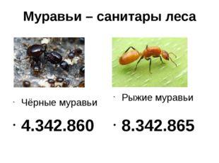 Муравьи – санитары леса Чёрные муравьи 4.342.860 Рыжие муравьи 8.342.865