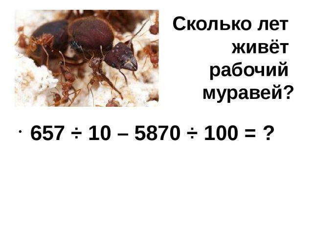 Сколько лет живёт рабочий муравей? 657 ÷ 10 – 5870 ÷ 100 = ?