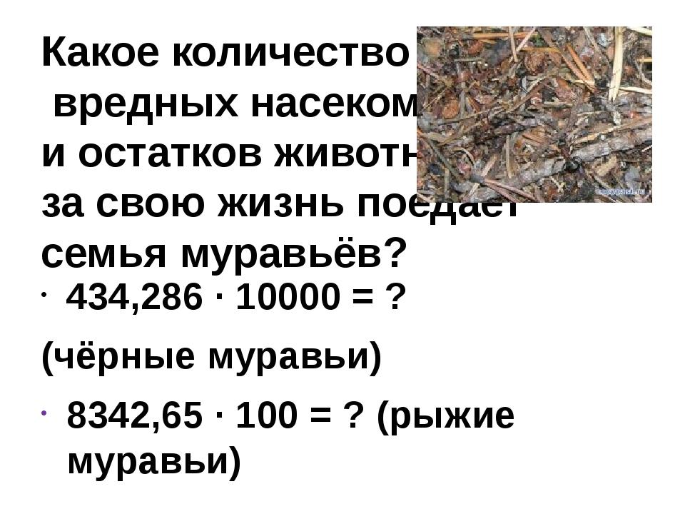 Какое количество вредных насекомых и остатков животных за свою жизнь поедает...