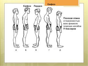 При беге нормально развивается и функционирует весь организм)