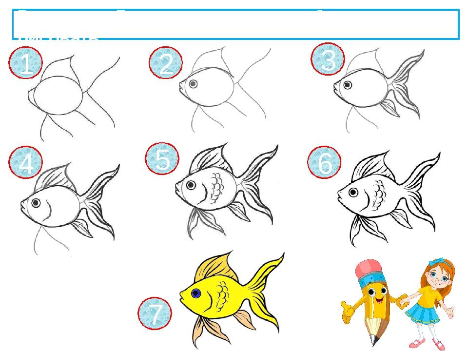 1 2 3 4 5 6 7 Рассмотри 7 шагов рисования рыбки и начни рисовать.